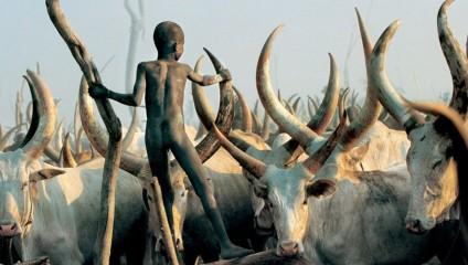 Жизнь племени Динка: редки кадры первобытного народа Африки