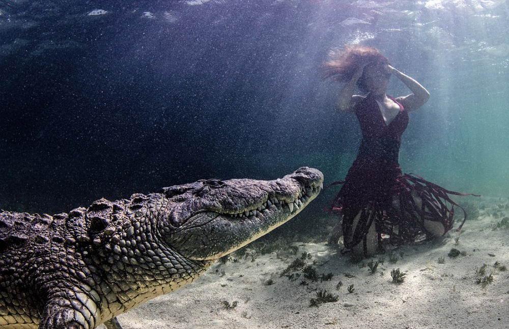 Женская красота и опасность природы в одном фото: под водой с крокодилом