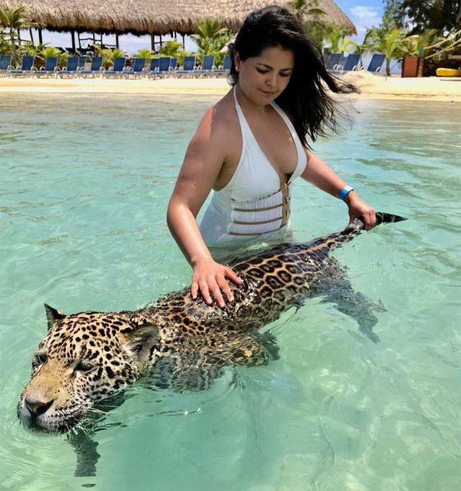 Отдыхаем и боимся: курорт, где можно искупаться с опасным зверем