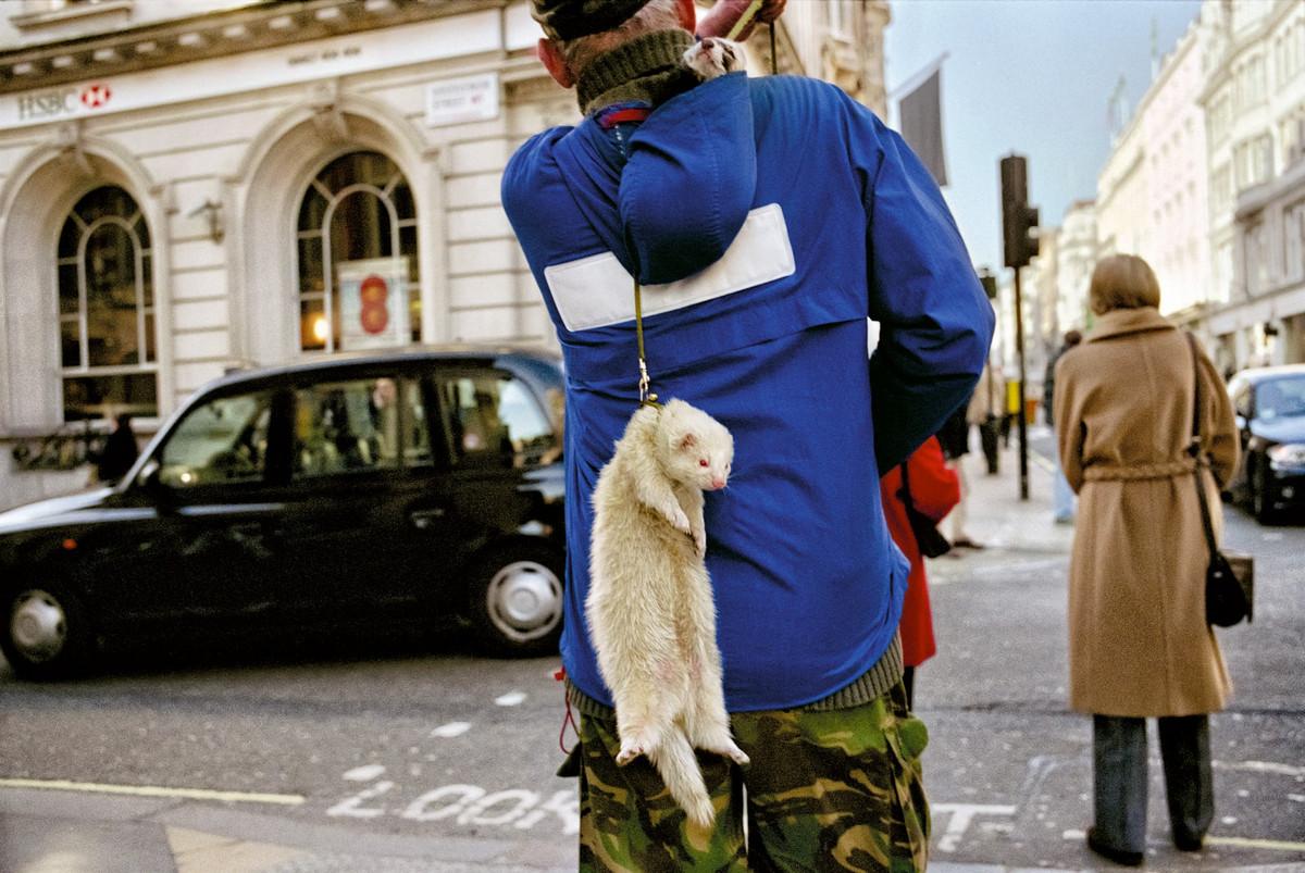Londonskiy-ulichnyy-fotograf-Mett-Styuart_16