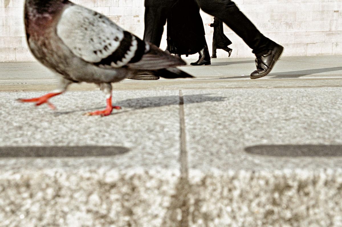 Londonskiy-ulichnyy-fotograf-Mett-Styuart_26