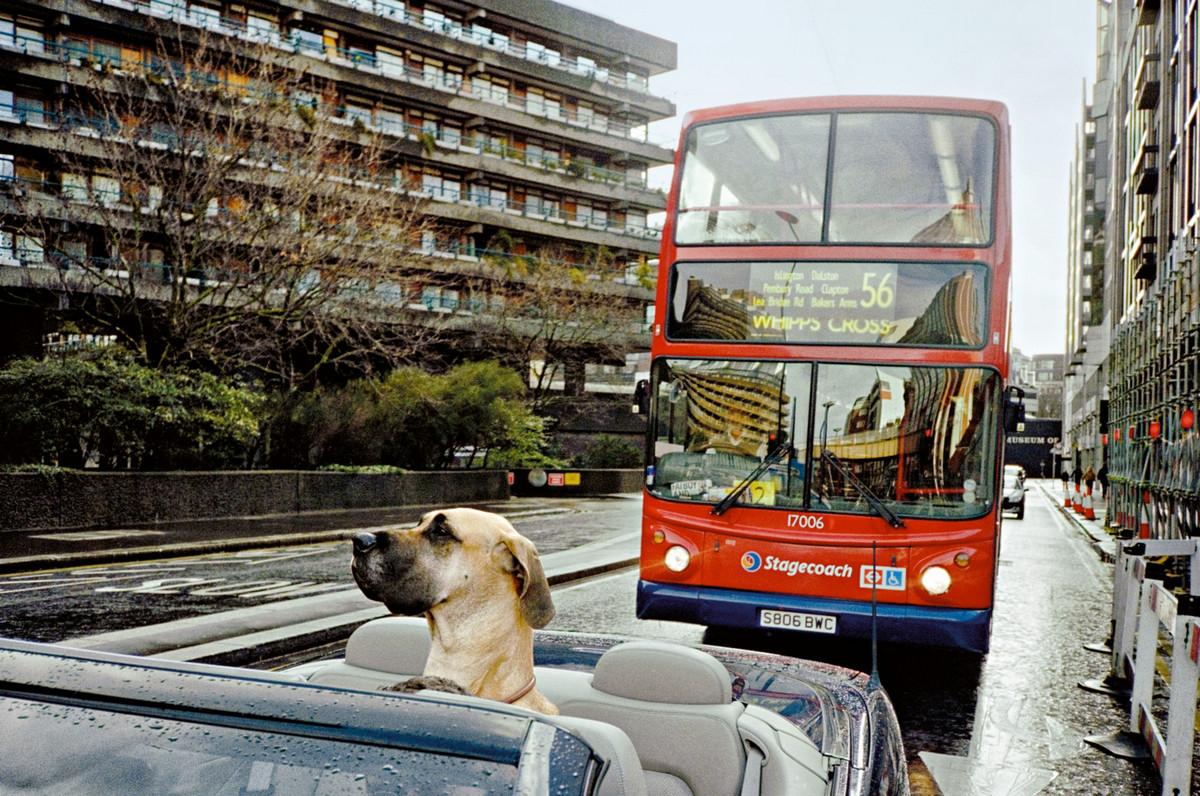 Londonskiy-ulichnyy-fotograf-Mett-Styuart_7