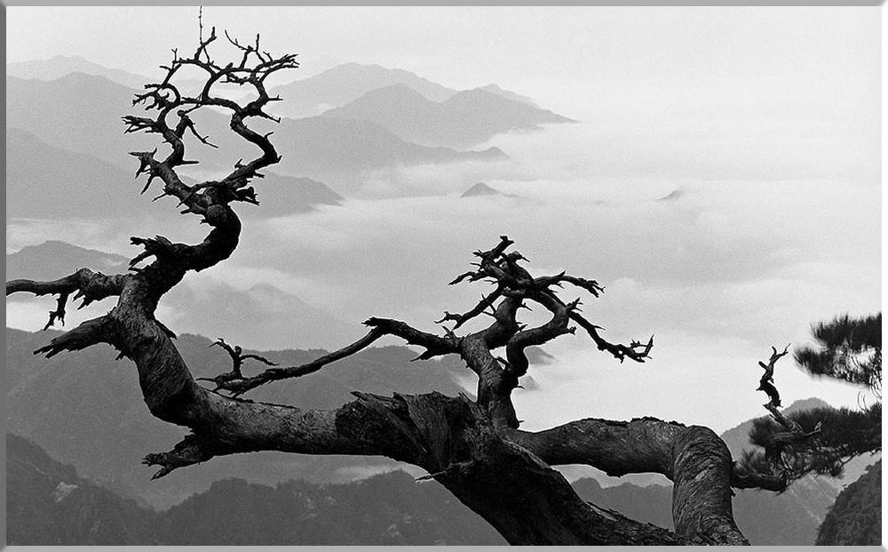 Peyzazhnyy-fotograf-Van-Vusheng-gory-Huanshan_29