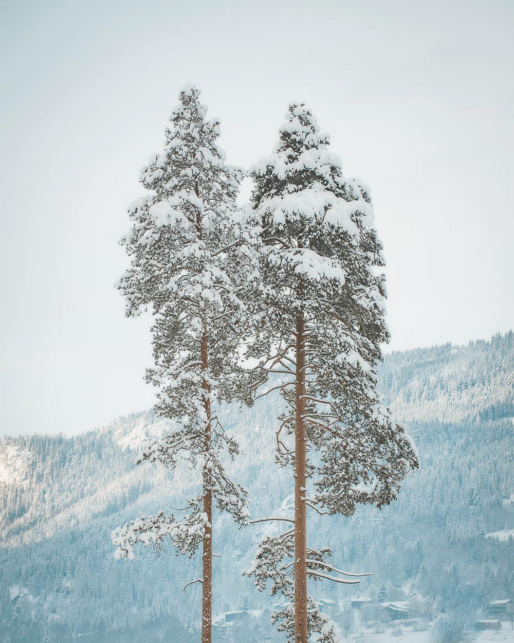 fotografii_norvegiji-21