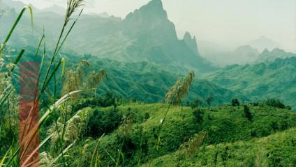Природа в завораживающих работах фотохудожницы Нади Аттуры
