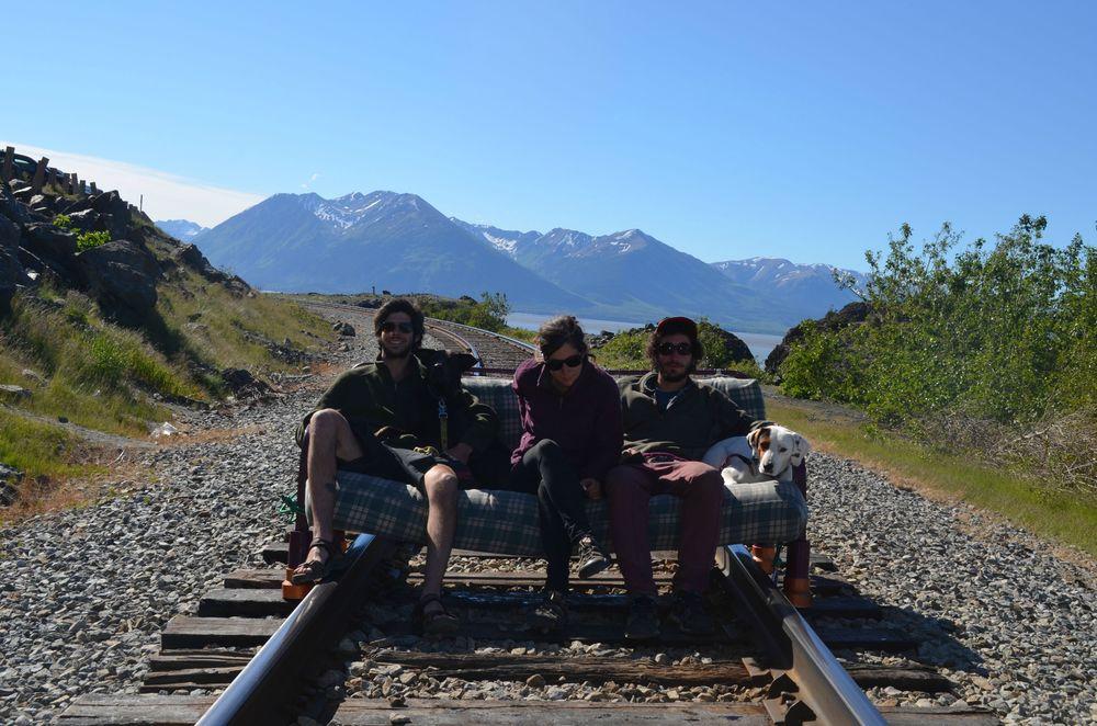 Собаки, диван – к путешествию готовы