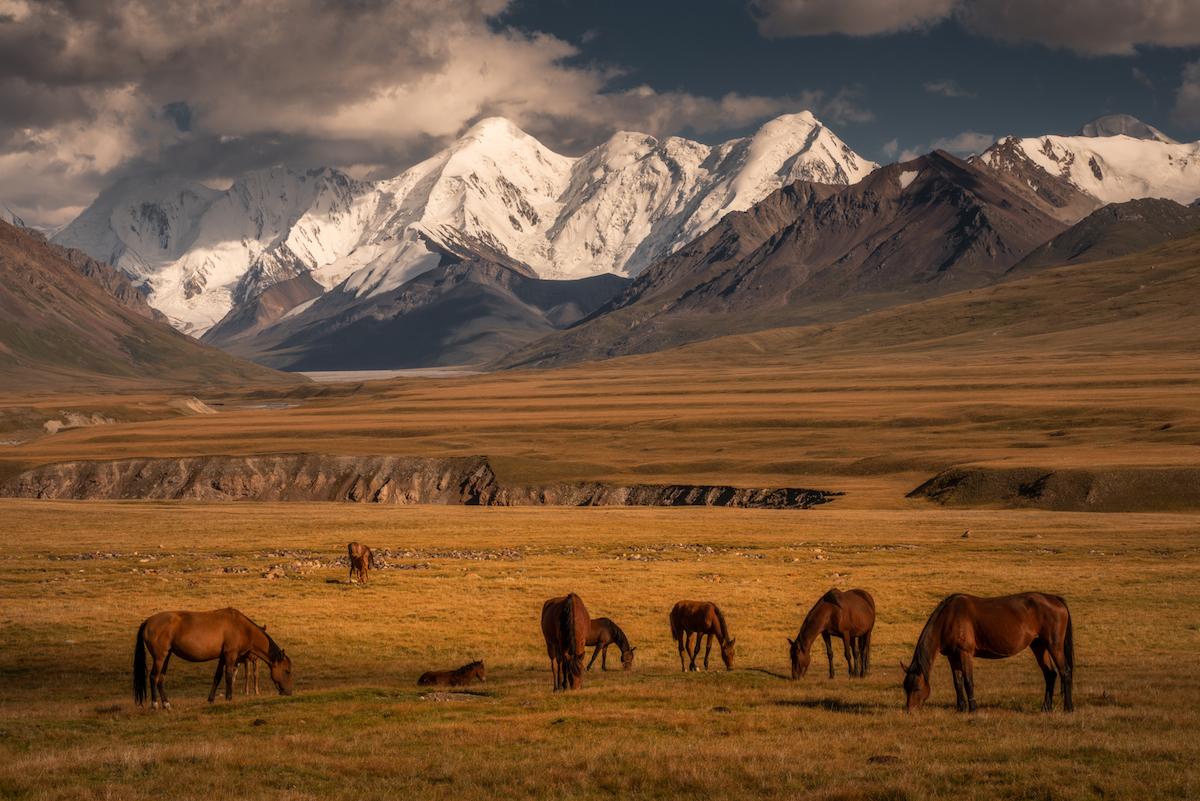 peyzazhi-Kirgizii-fotograf-Albert-Dros_1