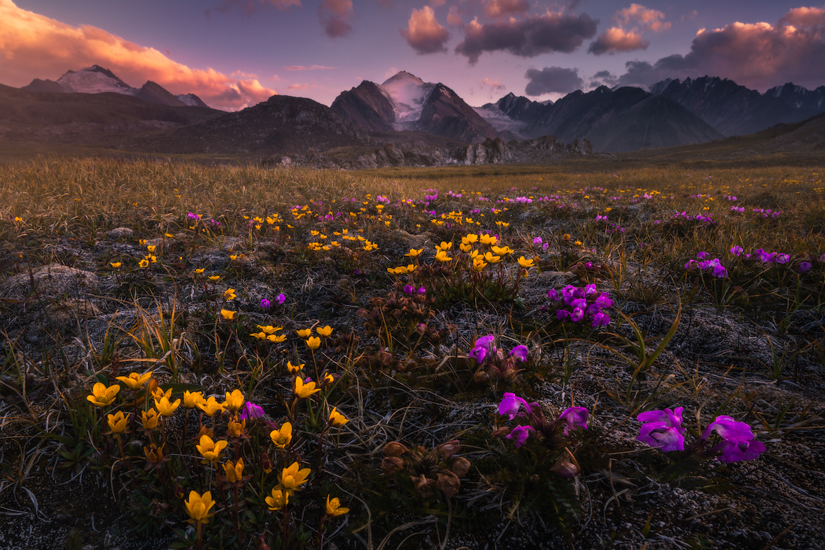peyzazhi-Kirgizii-fotograf-Albert-Dros_11