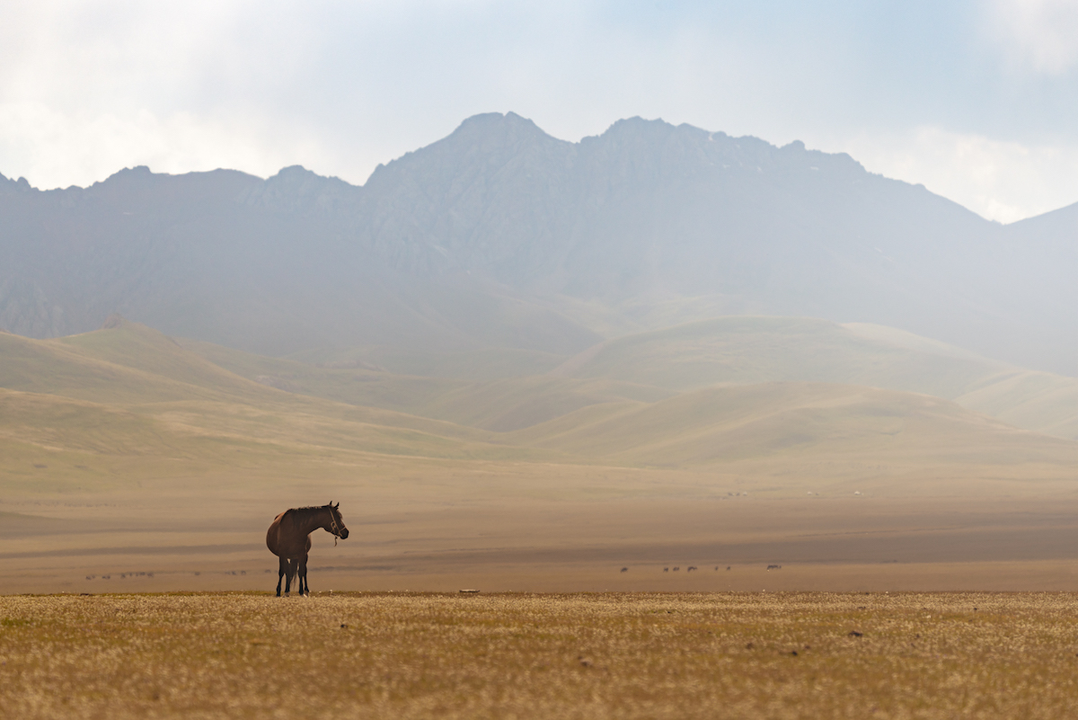 peyzazhi-Kirgizii-fotograf-Albert-Dros_23