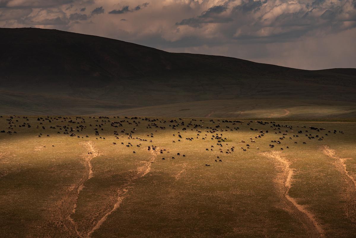 peyzazhi-Kirgizii-fotograf-Albert-Dros_7