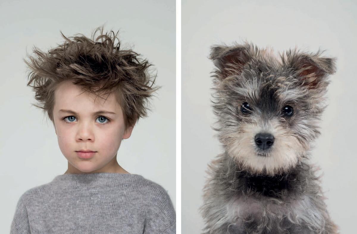 Близнецы: хозяева и их собаки в фотопроекте Джерарда Гетингса