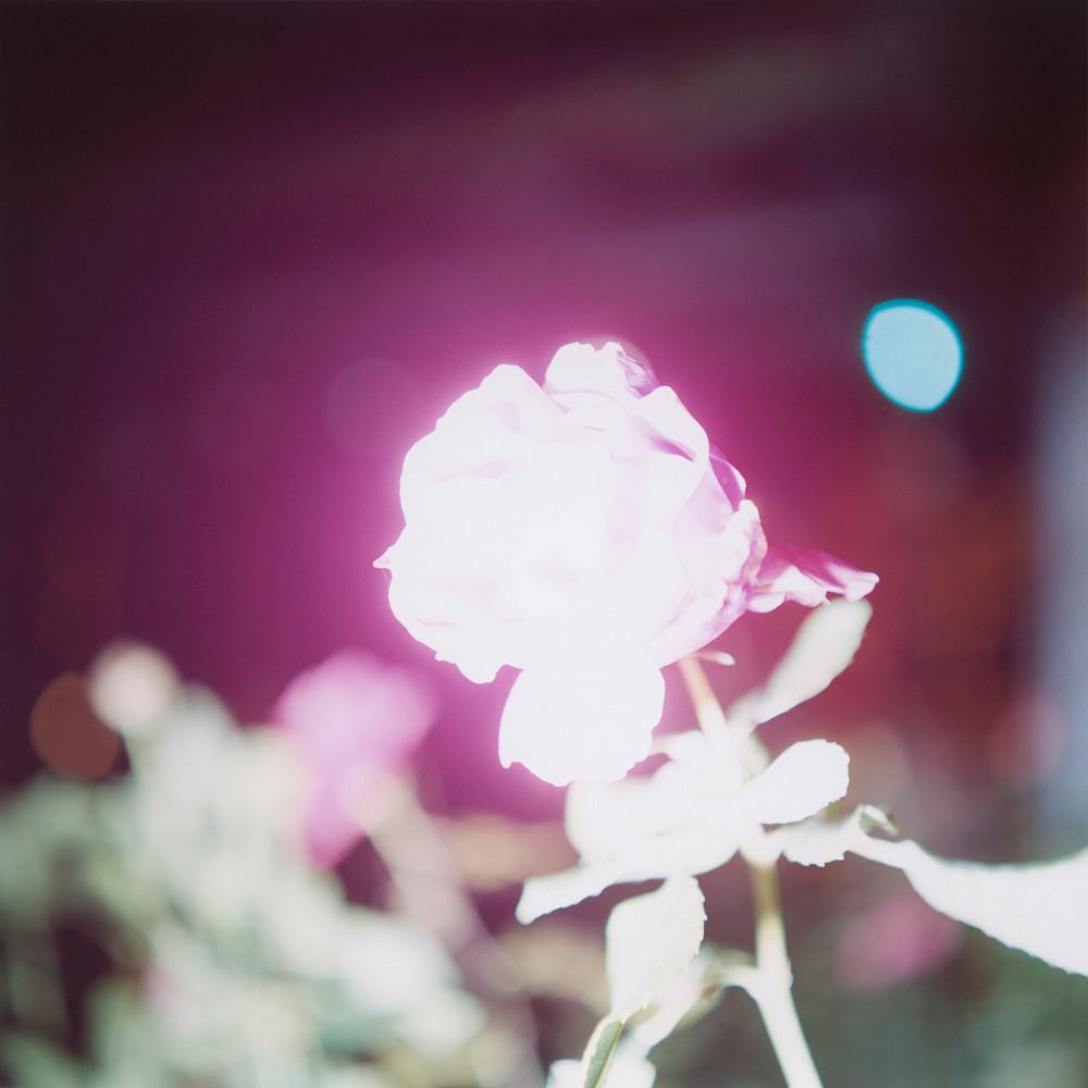 svetiashyjesia_fotografii_rinko_kawauchi-7
