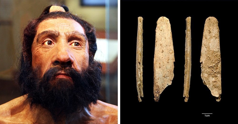 Найден инструмент с историей в 50 тысяч лет: его используют и сейчас