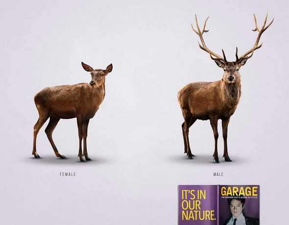 По красоте самцов не обойти: необычная реклама журнала Garage
