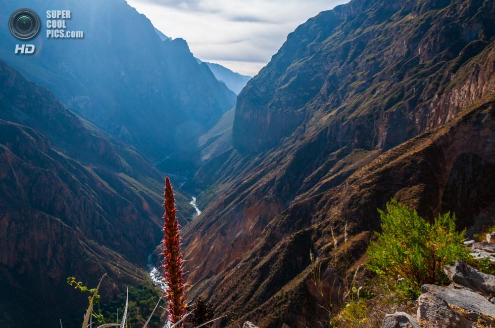 Каньон Колка, Перу