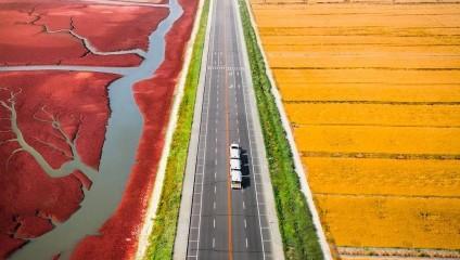 Пейзажи Азии: аэроснимки Йонаса Хорнехей