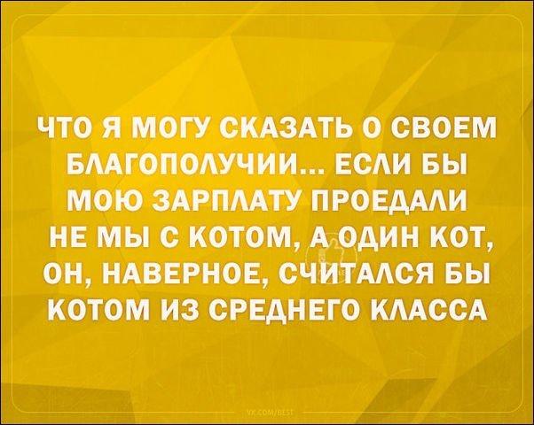 igor2-11111811432643_10