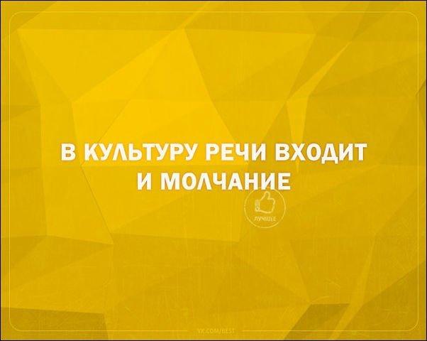 igor2-11111811432643_3