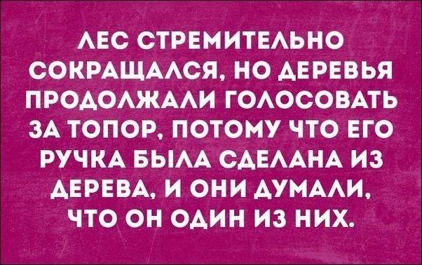 igor2-11111811432643_9
