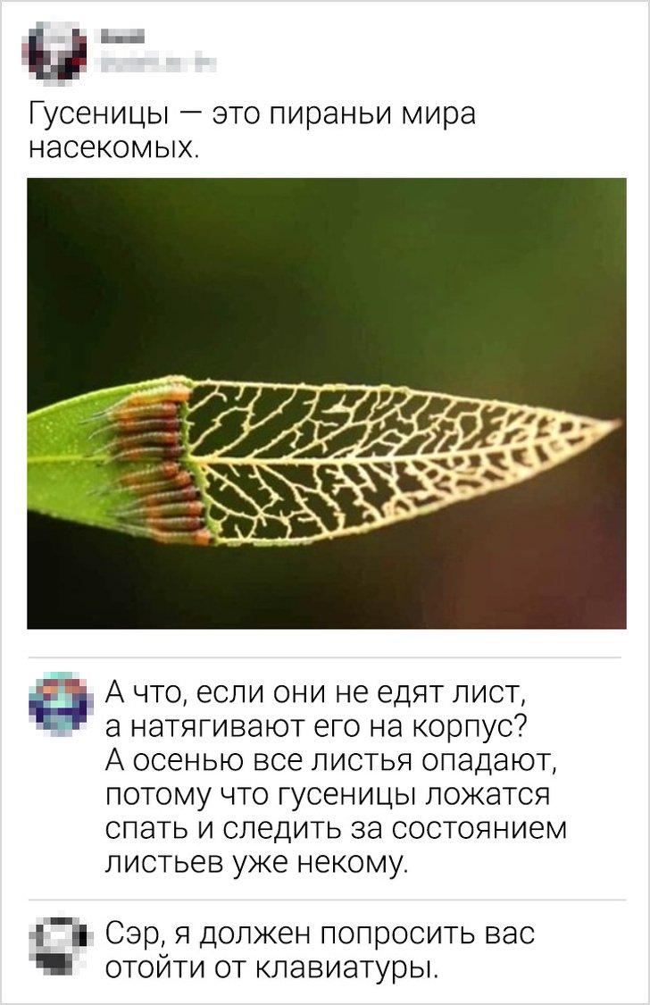 igor2-18111811192819_11
