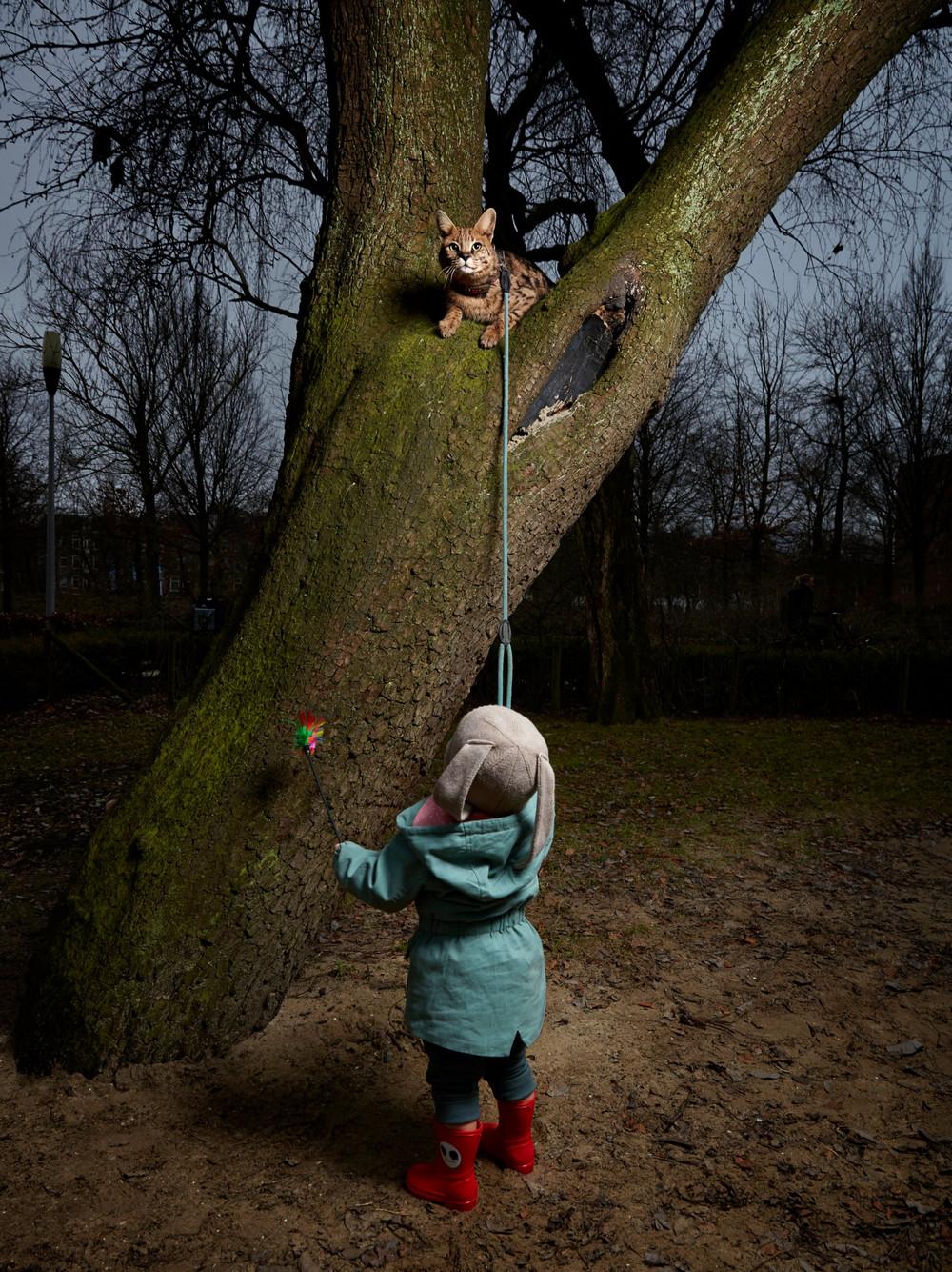 portrety-amsterdamskih-domashnih-zhivotnyh-Fotograf-Izabella-Rozendal_10