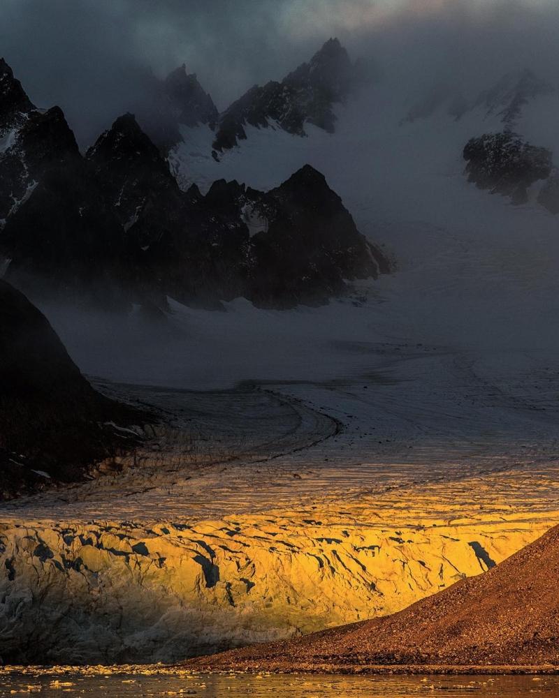 Арктическая дикая природа на снимках Одуна Ли Даля (10)