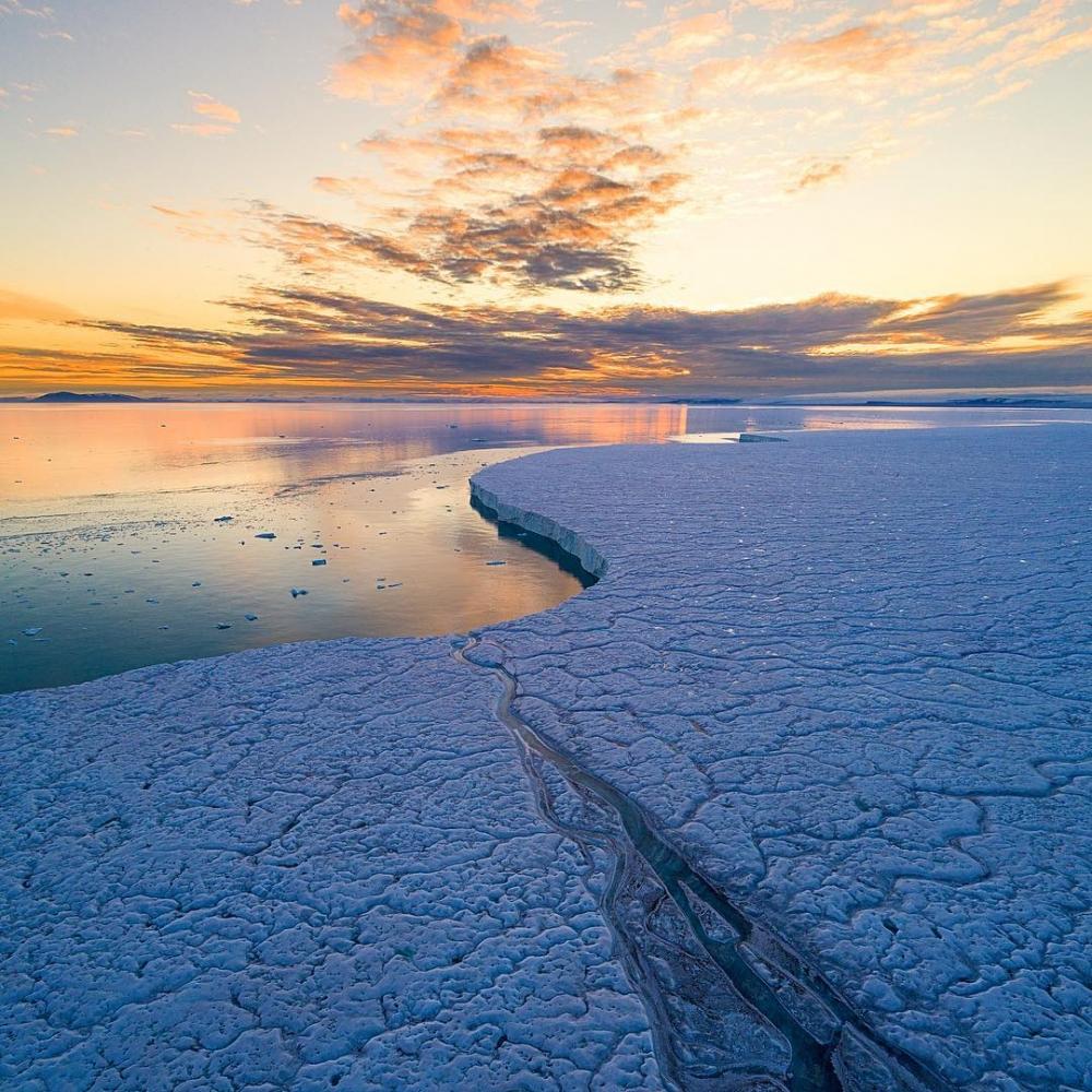 Арктическая дикая природа на снимках Одуна Ли Даля (8)
