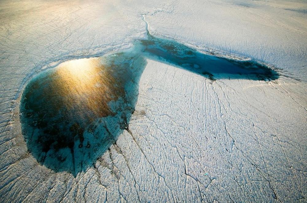 Арктические пейзажи Ника Коббинга (7)