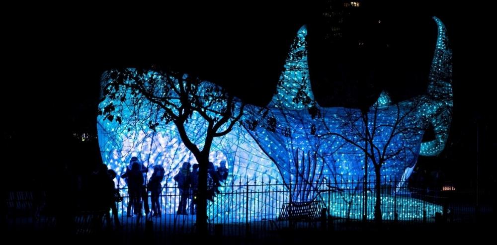 Фестиваль света в Париже (10)