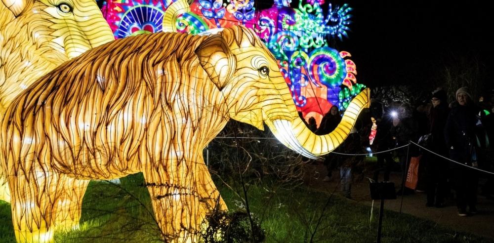 Фестиваль света в Париже (3)
