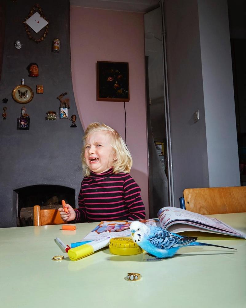 Изабелла Розендал — официальный фотограф домашних животных Амстердама (2)