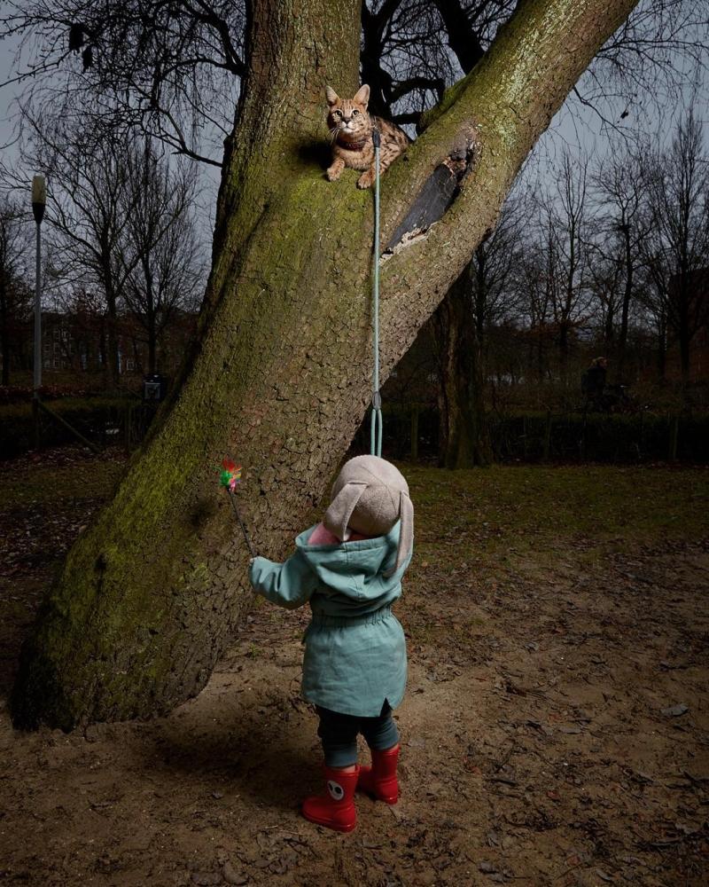 Изабелла Розендал — официальный фотограф домашних животных Амстердама (7)