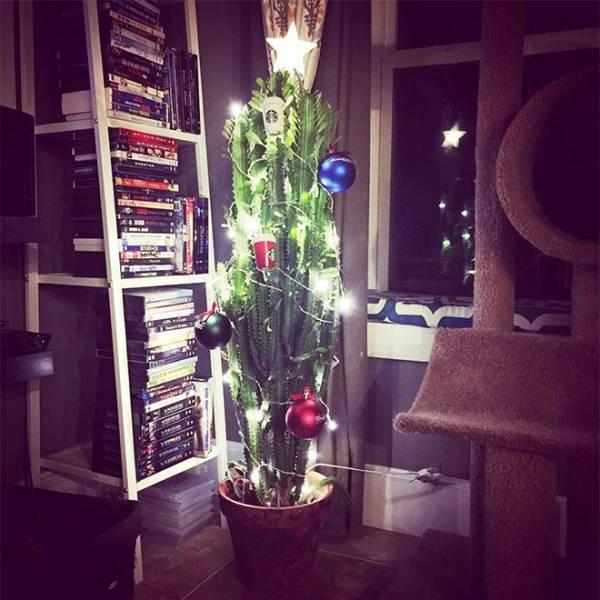 Креативные способы защиты новогодних украшений от домашних питомцев (20 фото) (6)
