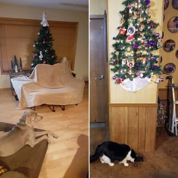 Креативные способы защиты новогодних украшений от домашних питомцев (20 фото) (8)