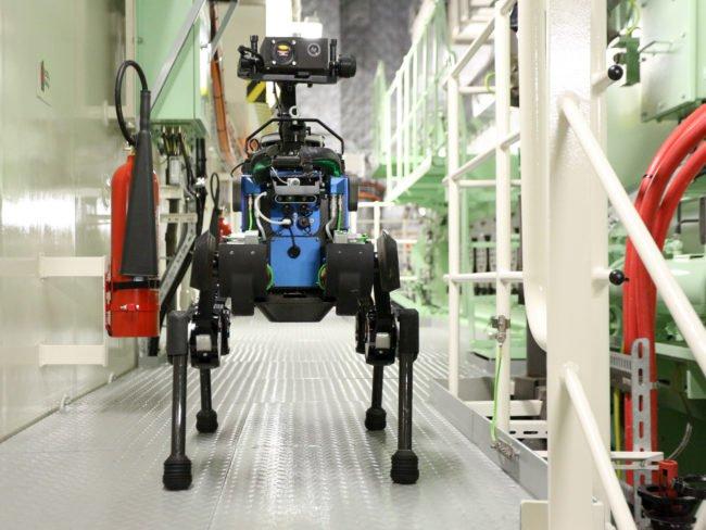 Четвероногие роботы и как их использовать: фото и видео