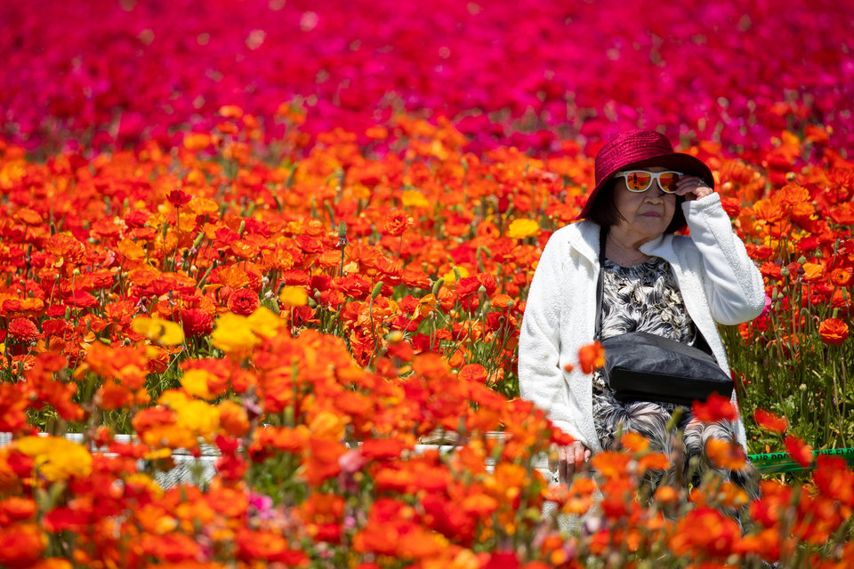 50 фотографий года от агентства Reuters_ на которые стоит взглянуть дважды или трижды 6