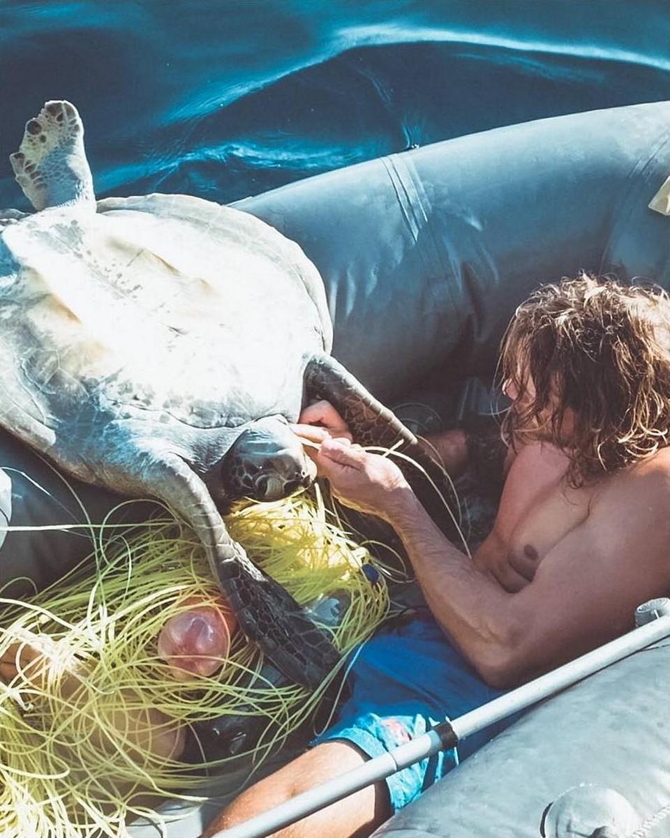 Чудесное спасение: два брата спасли от мучительной смерти четырех морских черепах
