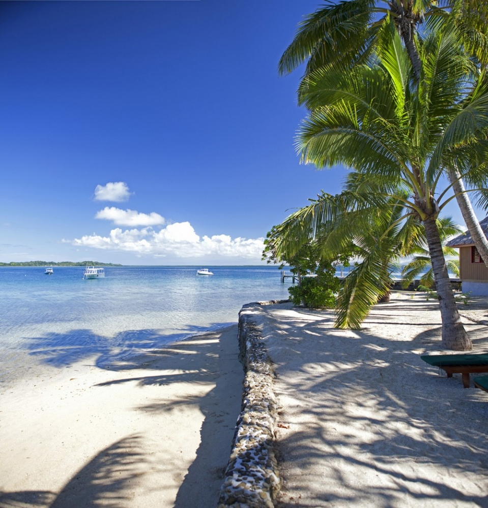Этот тропический рай с бутик_отелем и полем для гольфа может быть ваш за _6 100 000