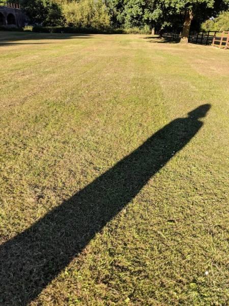 Причудливые тени (24 фото) (4)