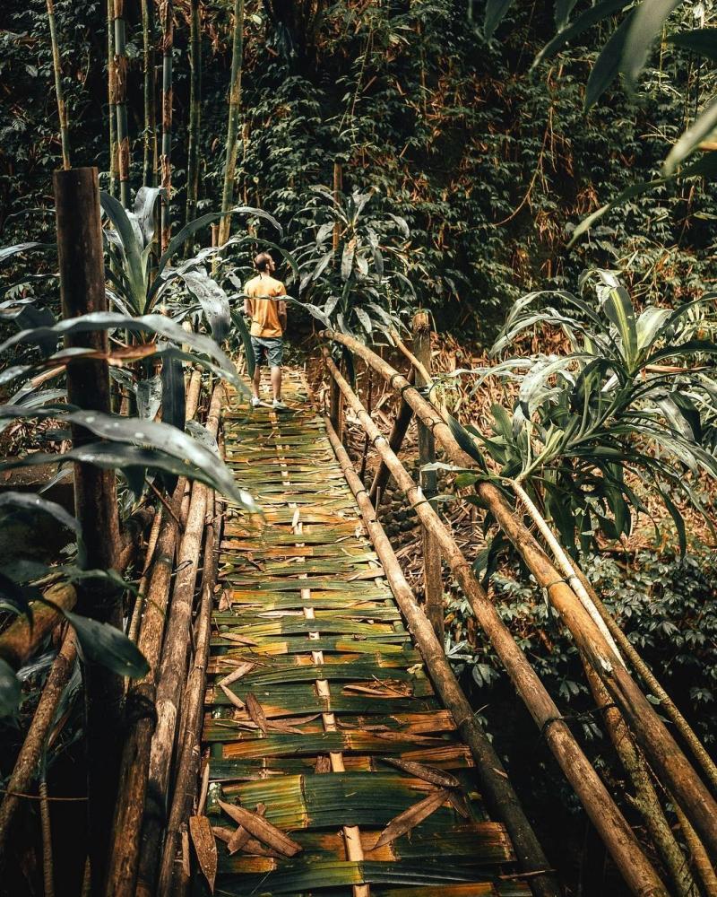 Путешествия и приключения на снимках Ллойда Эванса (4)