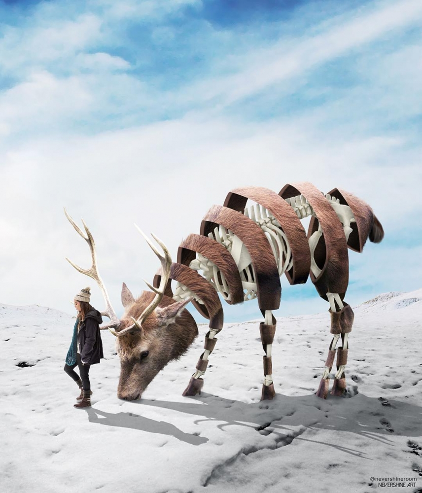 Сказочные животные_ озорные фотоманипуляции Адэ Маолана (11)