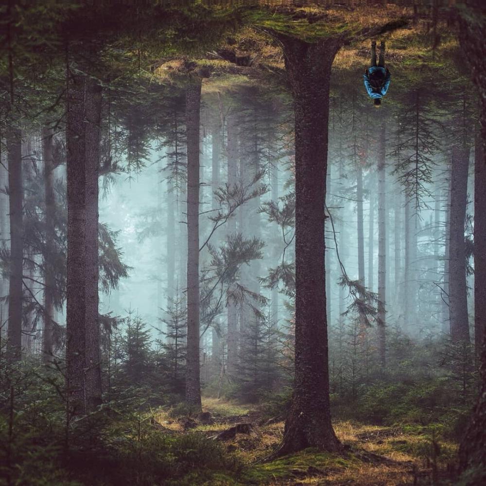Цифровая страна чудес_ сказочные фотоманипуляции Диого Сампайо (12)