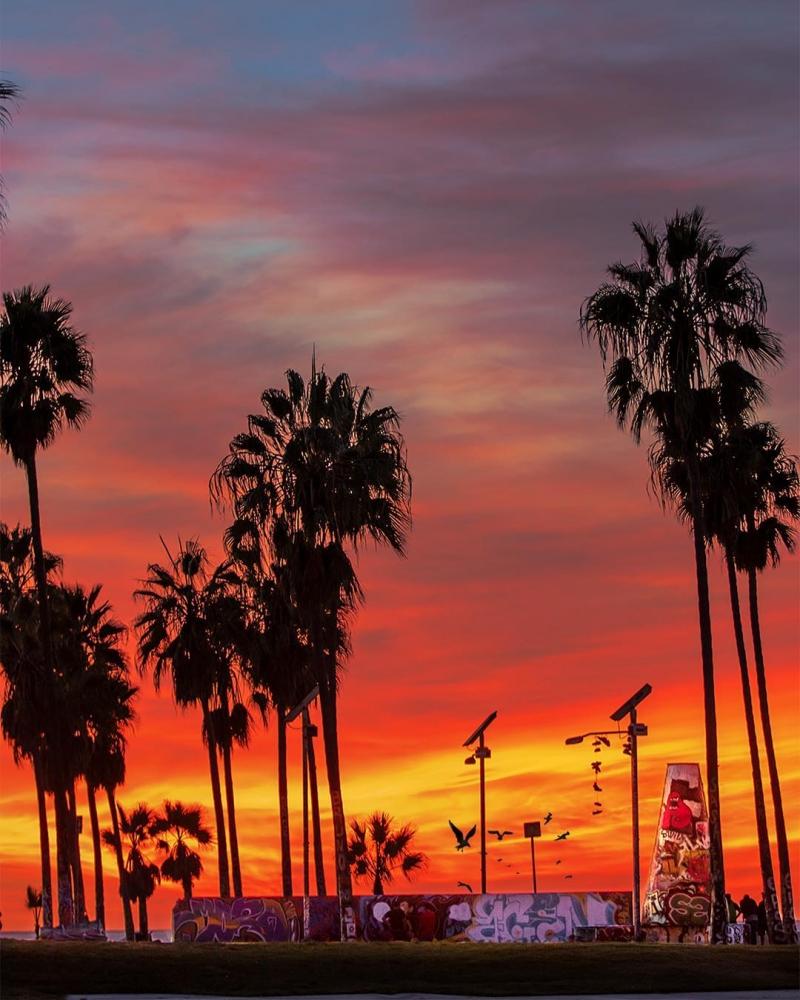 Удивительные пейзажи Калифорнии Нейта Кэрролла (9)