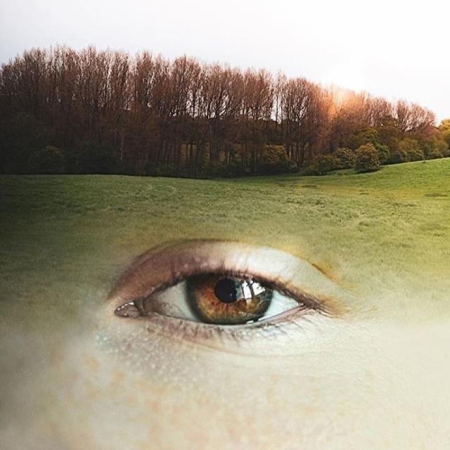 Уникальные иллюзии от Моники Карвалью (19 фото) (11)