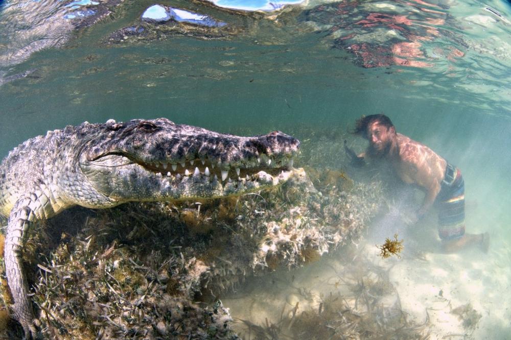 Впечатляющая фотосессия с крокодилами (3)