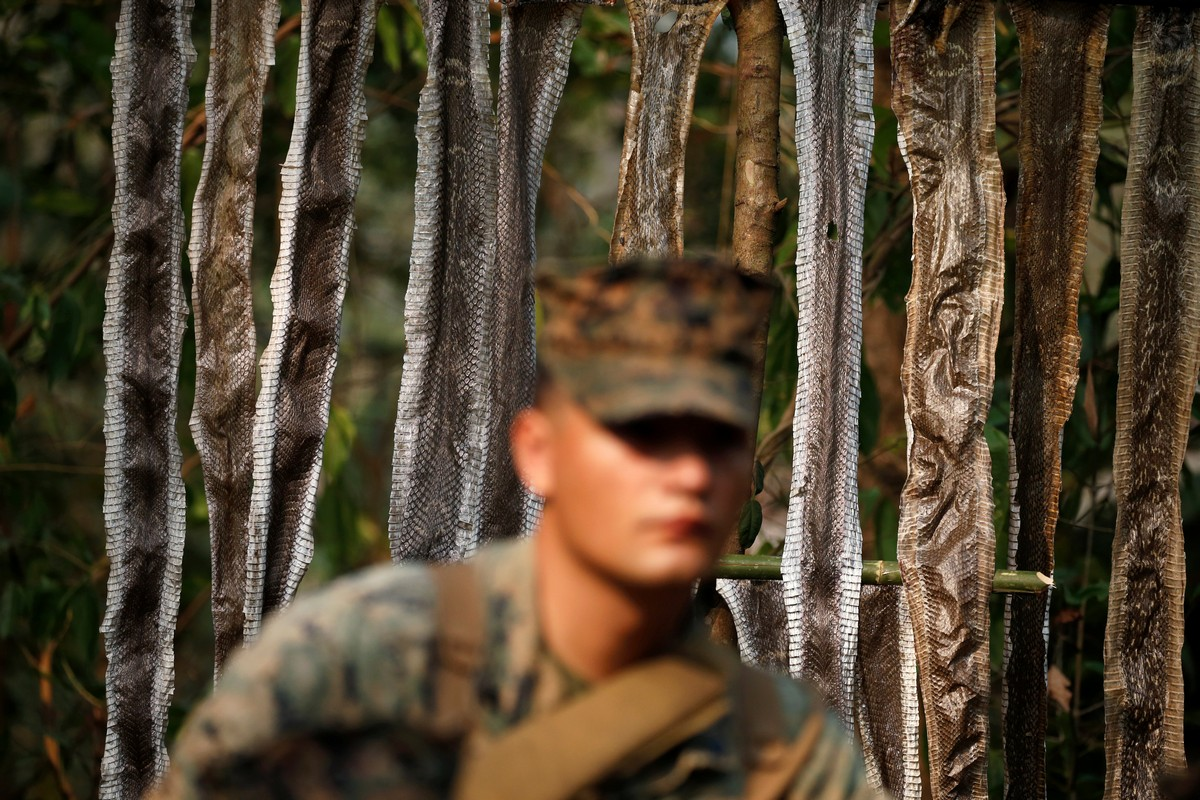A soldier stands in front of skins of snakes during the Cobra Gold multilateral military exercise in Chanthaburi