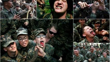 Фоторепортаж с самых суровых военных учений «Cobra Gold»
