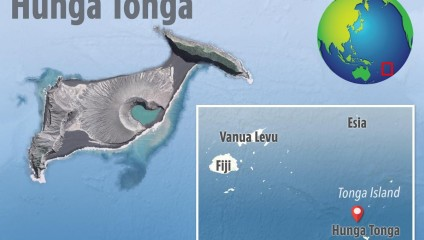 На новом острове за пару лет появилась жизнь
