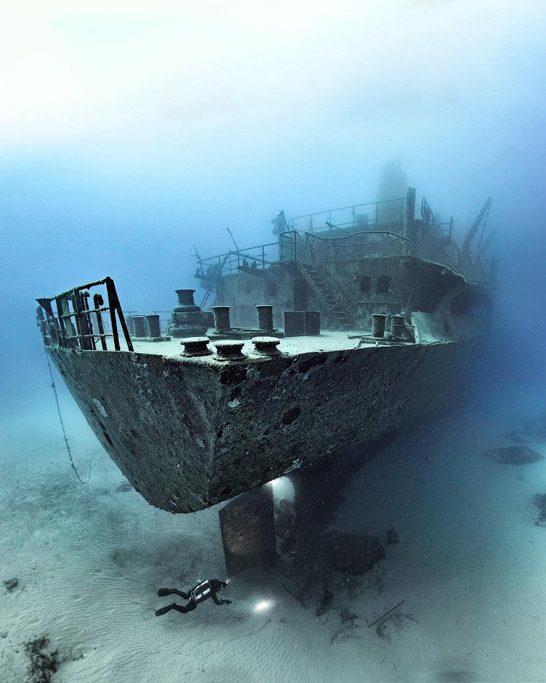 Жизнь под водой: завораживающие фотографии Алекса Доусона