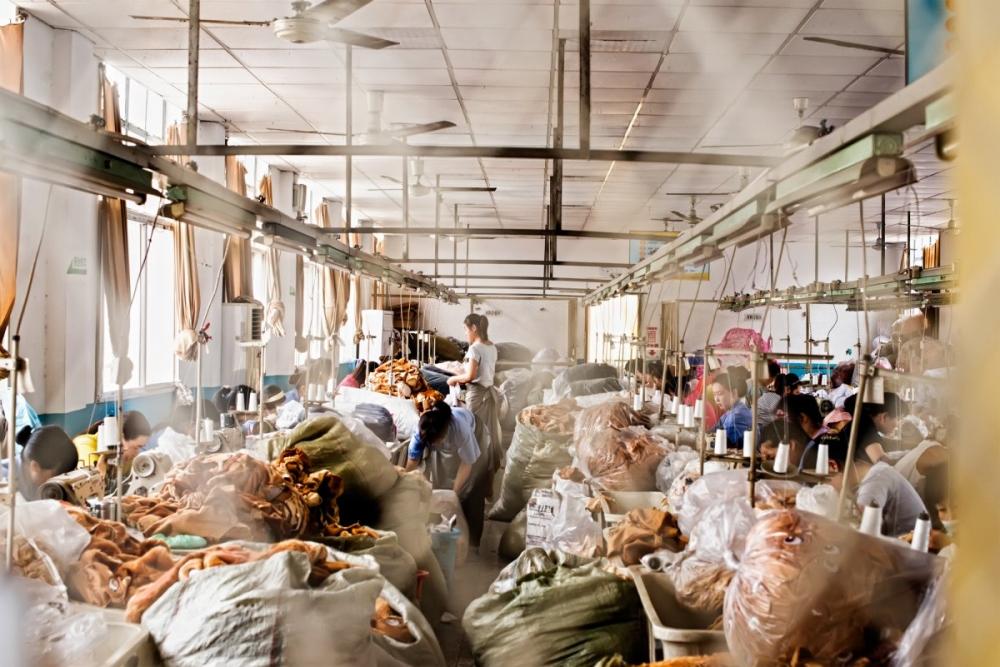 Экскурсия на китайскую фабрику игрушек (3)